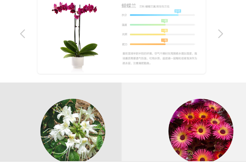 حسگر نظارت بر گل و گیاه شیائومی
